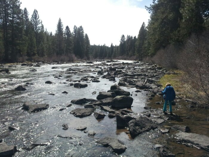 Fishing the Deschutes River behind our hotel