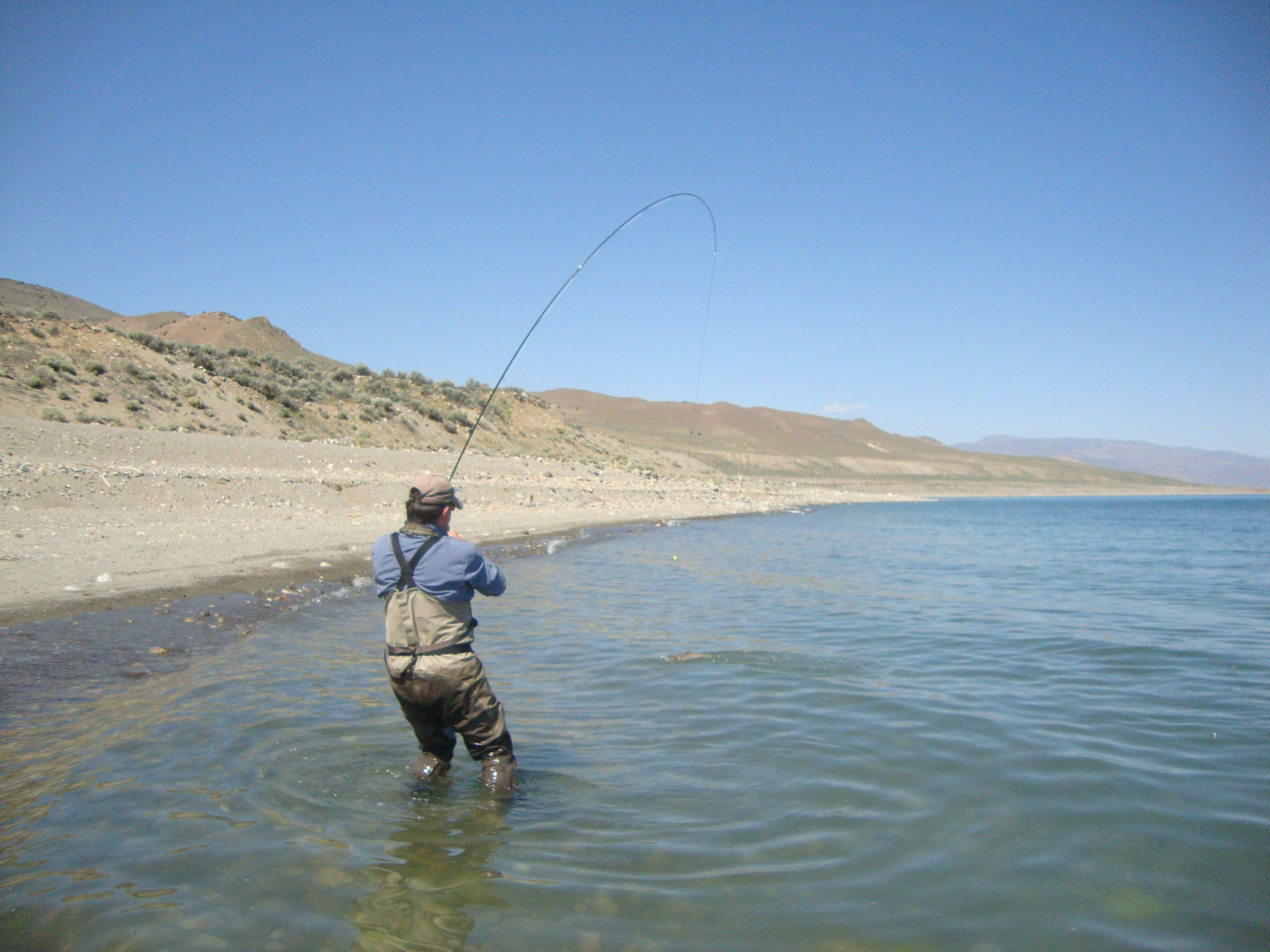 Trout bums on the web become one with the chum for Pyramid lake ca fishing report