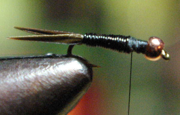tying a Copper John at the halfway point