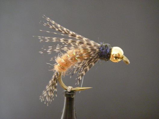 Anderson's Bird of Prey October Caddis